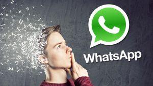 Como vender con Whatsapp Business